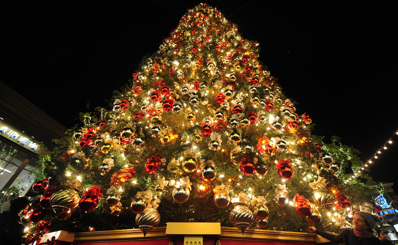 Albero Di Natale Grande.Un Natale Esagerato A Pianella L Albero Piu Grande D Abruzzo Domenica L Accensione Abruzzolive