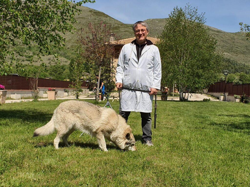 Domande Al Veterinario Cane perché il nostro cane bruca l'erba? quando devo preoccuparmi